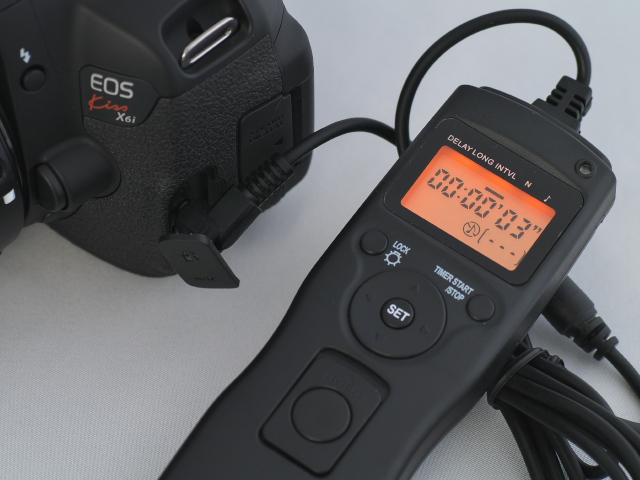 P1010040.jpg
